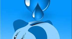 Financement de la biodiversité par la facture d'eau : une solution pragmatique ?