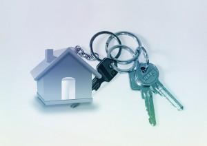 immobilier logement loyer preavis