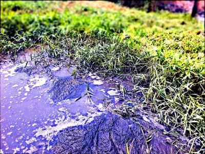 nitrates-pollution-eau