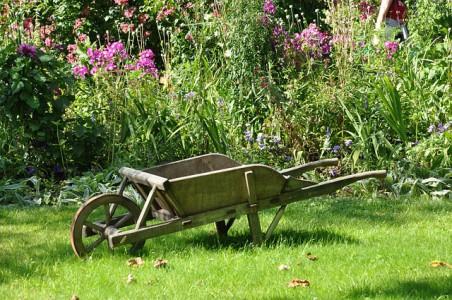 jardiner-sans-pesticides-alternatives-pesticides-purin-ortie-sauve