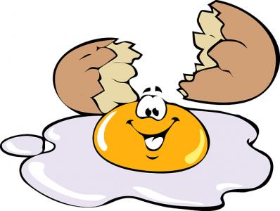 œuf-reglementation-alimentation saine