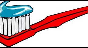Les perturbateurs endocriniens altèrent (aussi) l'émail dentaire