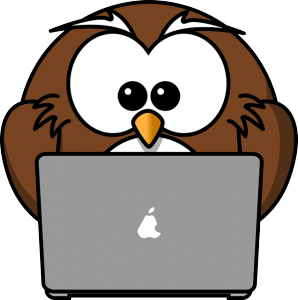 facture-internet-ou-mobile-internet+-attention-aux-depenses-involontaires