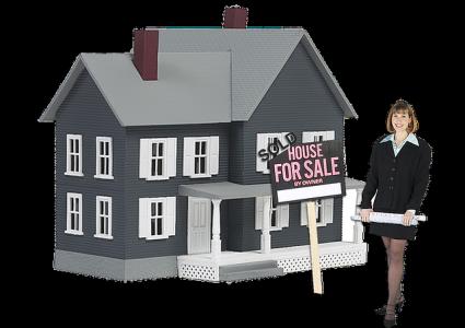 investissement-locatif-conseil-defaillant-professionnels-sanctionnes