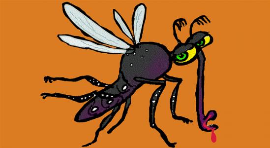 virus-zika-annulation-vol