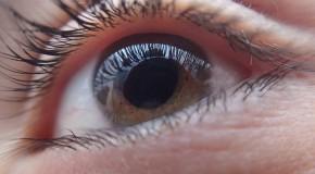 Dépistage du glaucome, y avez-vous pensé ?