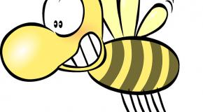 Les abeilles sont officiellement en voie de disparition !