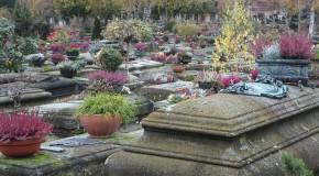 Prévoyance obsèques : 10 questions que l'on n'ose pas poser