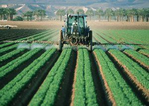 perturbateurs-endocriniens-bruxelles-pesticides