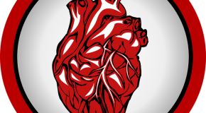 Dons d'organes : consentement présumé ou refus ?