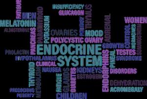 perturbateurs-endocriniens