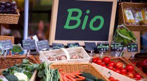Alimentation bio. Moins de risque de cancer