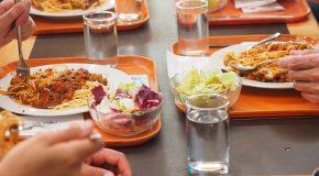 Alimentation bio dans les cantines. Un projet de loi toujours très attendu