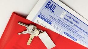 Bail d'habitation : modèle-type de contrat