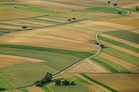 prix-agricoles-seuil-revente-perte-enfumage-que-choisir