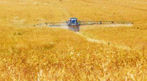 Loi Agriculture et alimentation. Beaucoup trop peu de changements au final