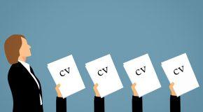 Expériences, diplômes, loisirs, photo : comment bien mettre à jour son CV ?