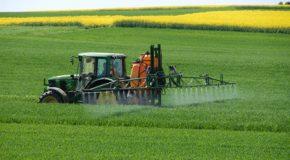 Loi Agriculture et alimentation. Les sénateurs raffolent des pesticides