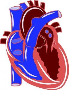 # alerte danger Traitement douleur risque cardiovasculaire diclofénac