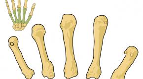 Prolia (ostéoporose)
