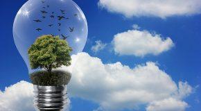 Transition énergétique et programmation pluriannuelle de l'énergie. Les mots du Président ne répondent pas aux maux actuels