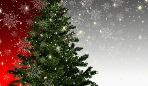 # Sapin Noël