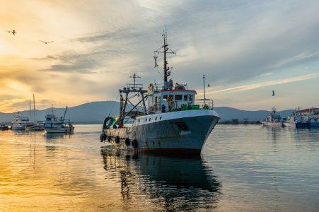 # Enquête pêche durable