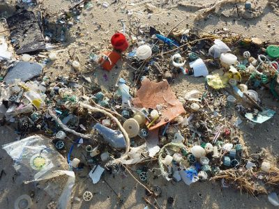 # microplastiques pollution