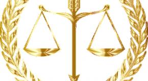 Consultation des consommateurs Élaborons, ensemble, une loi pour une consommation responsable pour l'après-crise